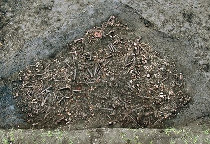 The remains of around 50 soldiers who died in the Thiry Years' War were uncovered in Bavaria.