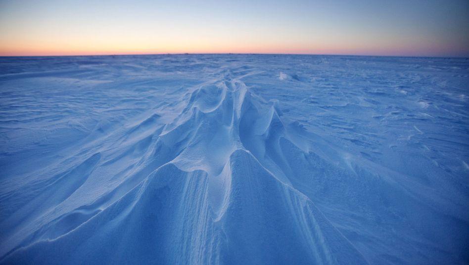 Schnee und Eis in Alaska: Wie weitreichend sind die Folgen der Arktisschmelze?