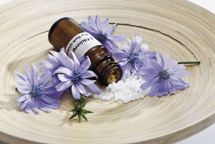 Bachblüten: Der Briten liebste Therapie