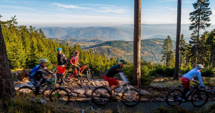 Trail Park Klínovec in Tschechien: Normalerweise ist dieser Blick auf das Duppauer Gebirge beim Stoneman-Miriquidi-Abenteuer inklusive. Die Coronakrise zwingt Mountainbiker jedoch 2020 auf andere Wege.