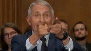 »Wenn hier jemand lügt, Senator, dann sind Sie das«