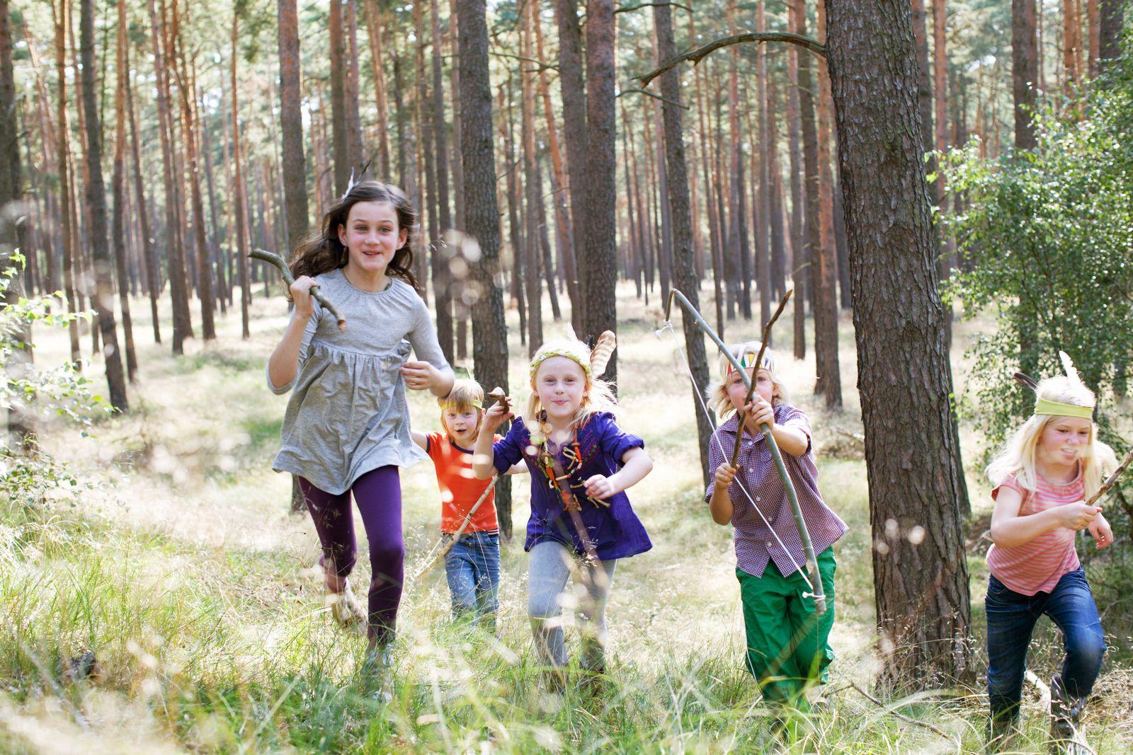 NICHT MEHR VERWENDEN! - Kinder Wald Spiel