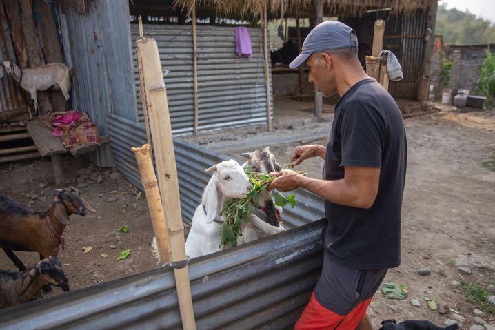 Dahal lebt derzeit bei seinem Bruder und hilft ihm auf dessen Farm