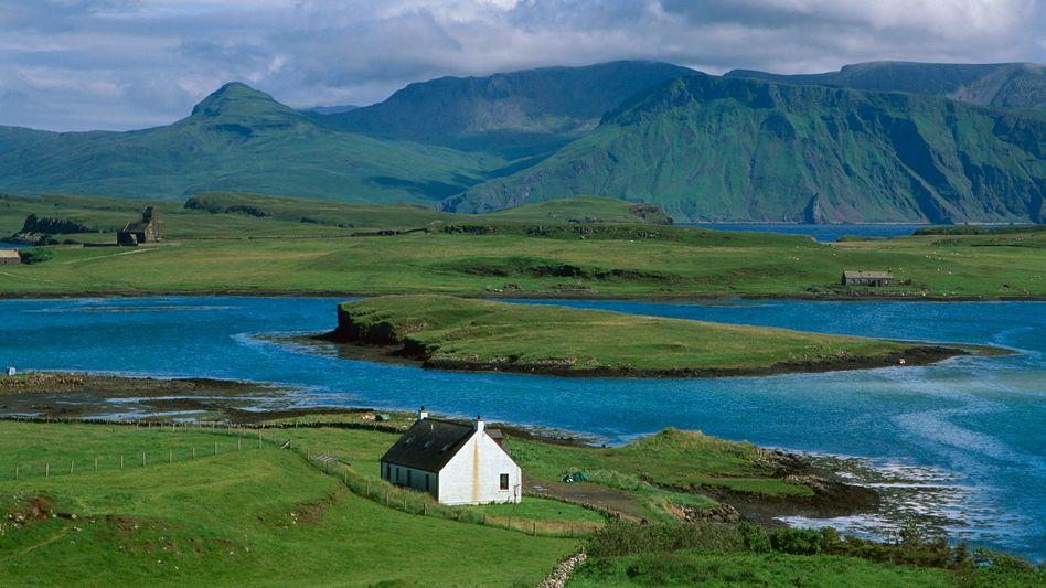 Insel Canna im Atlantik: Kaninchenplage auf schottischem Eiland