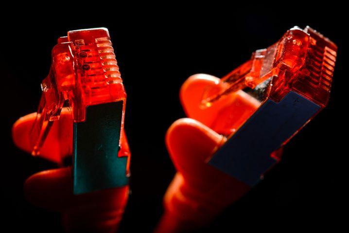 Stecker eines Ethernet-Kabels: Symbolbild für alles, was im Internet passiert