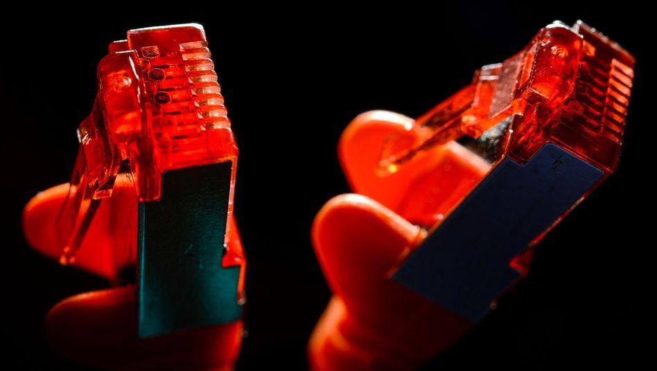 Stecker eines Ethernet-Kabels: Die Empörungsöffentlichkeit wird politisch Verantwortliche suchen