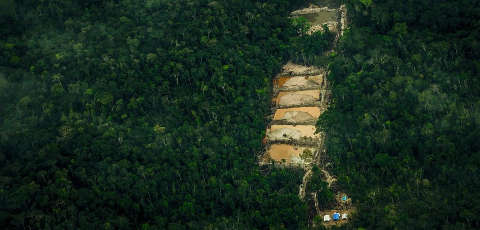 Illegale Goldminen im Amazonas-Regenwald
