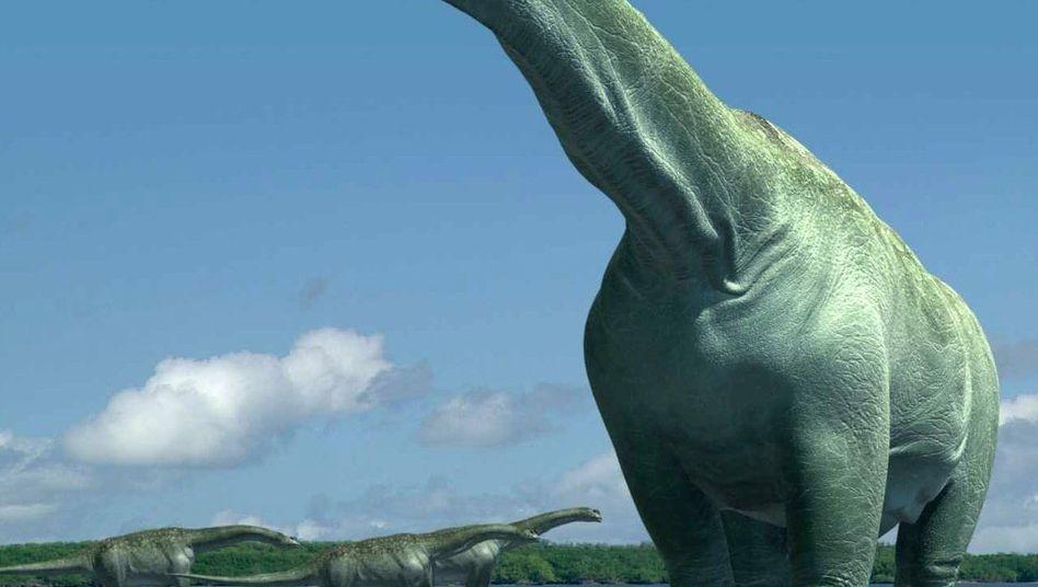 Computerbild eines Sauropoden: Die größten Dinosaurier konnten ihren Hals recken