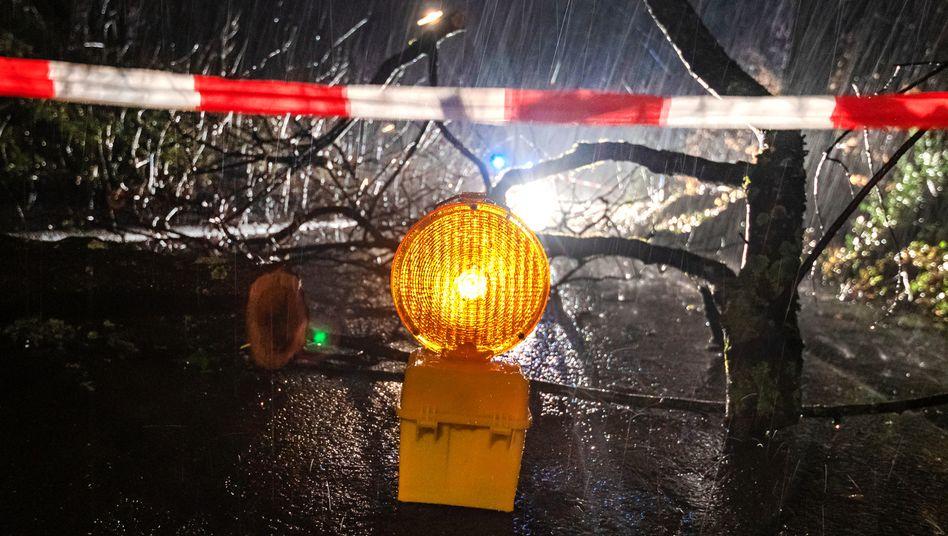 Eine Straße in Kierspe in Nordrhein-Westfalen ist wegen umgestürzter Bäume gesperrt.