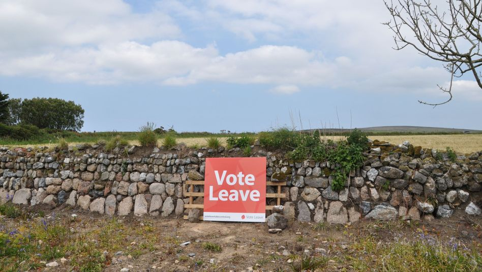 A poster from the Leave campaign in the Cornish countryside