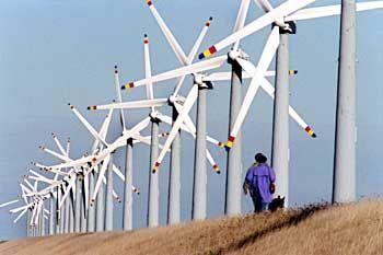 Windpark Friedrich-Wilhelm-Lübke-Koog: Die Branche hat 90 Prozent Zustimmung