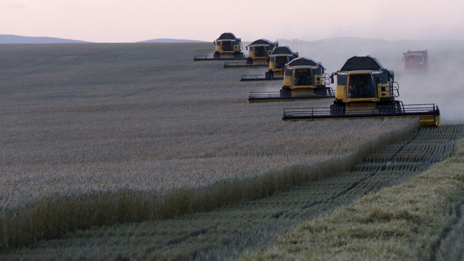 Combine harvesters work on wheat field of Solgonskoye farming company near village of Talniki southwest from Krasnoyarsk
