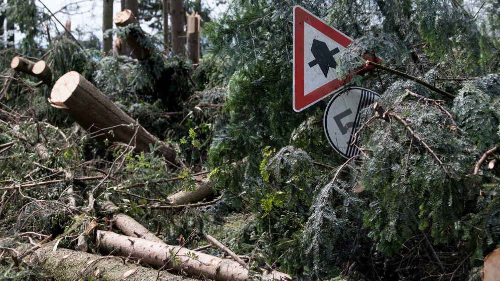 Hauzenberg: Sturmschäden in Bayern