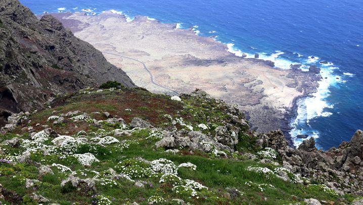 Unbekanntes El Hierro: Ziege vom Hirten, Fisch frisch vom Kutter