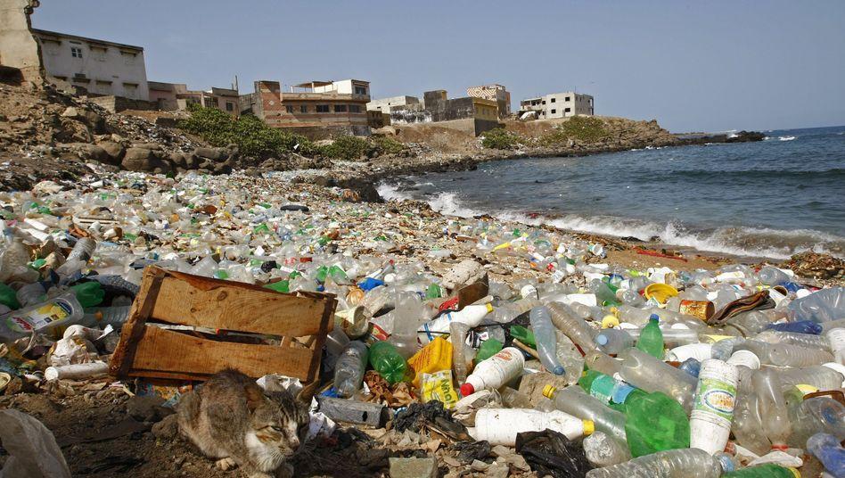 Plastikmüll an einem Atlantikstrand