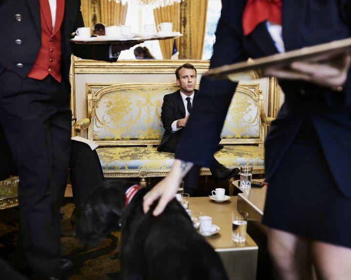 """Staatschef Macron im Salon doré: """"Ich bin ein Kind der Mittelschicht"""""""