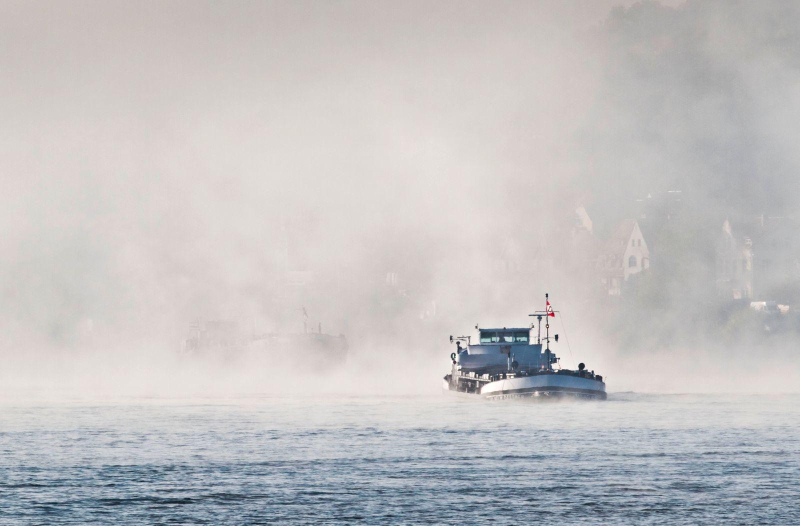 Morgennebel am Rhein