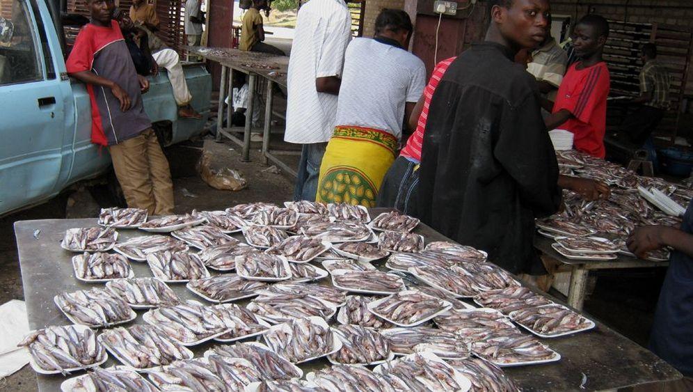 Ostafrika: Illegale Fischer auf dem Tanganjikasee