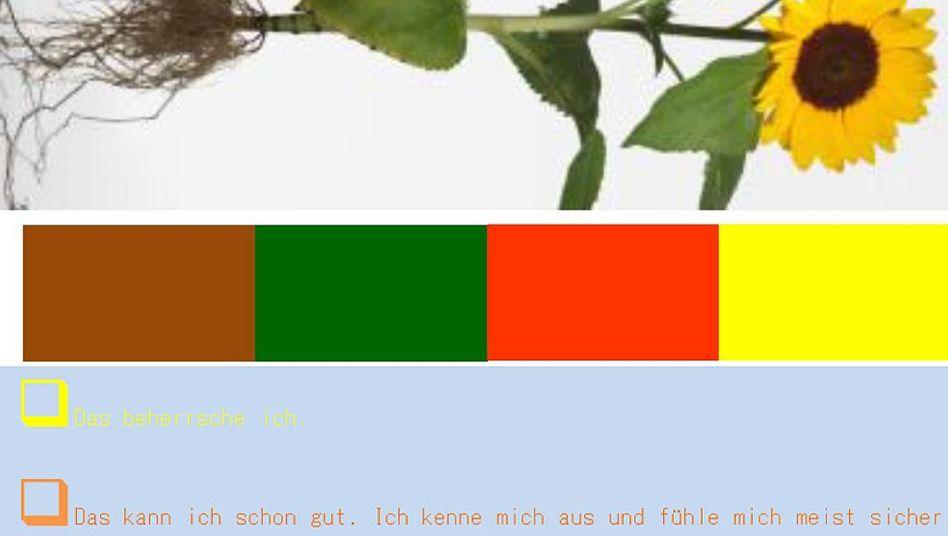 Von Braun bis Gelb: So wurde das neue Farbschema den Eltern in der Schweiz vorgestellt