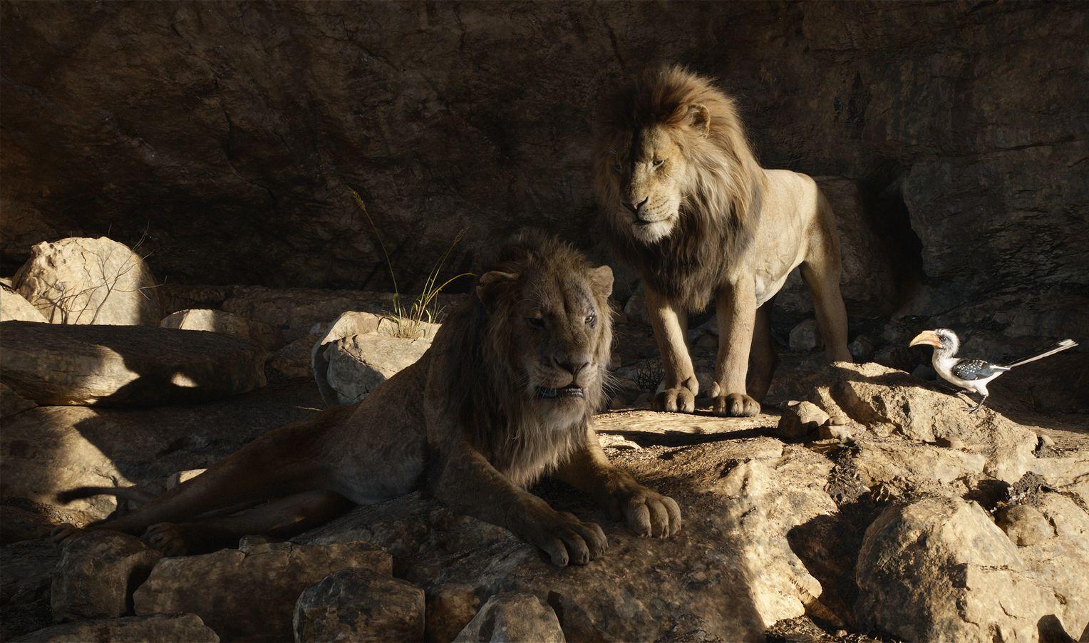der könig der löwen akte