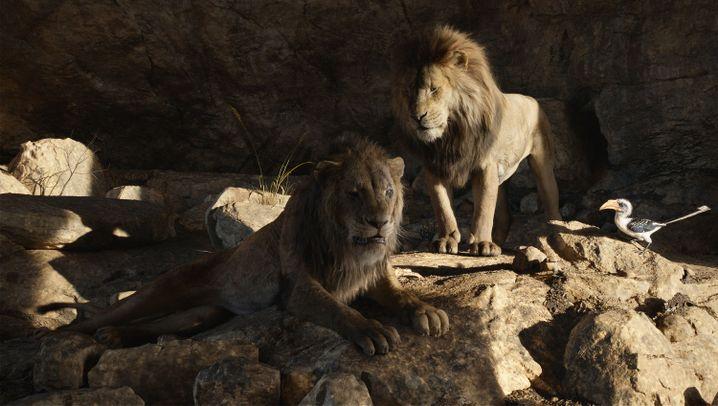 Fotostrecke: Der neue König der Löwen