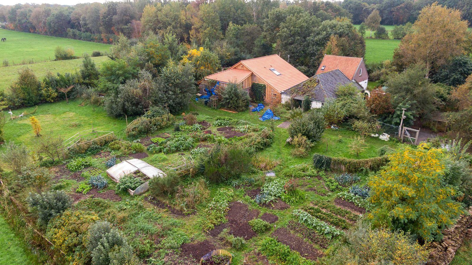 Farm in Ruinerwold