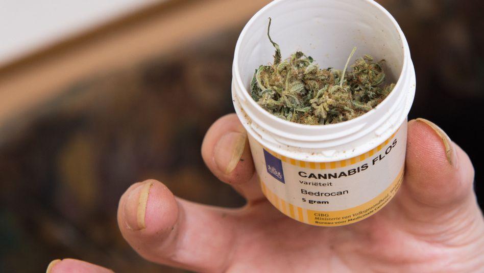 Cannabis auf Rezept (Archiv)