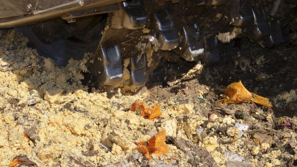 """Bulldozer zerstört Käse: """"Es gibt keinen Albtraum, der in Russland nicht real werden könnte"""""""