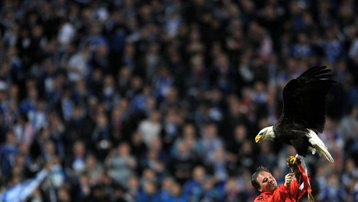 Champions League: Schalker Abklatscher und Bremer Backpfeifen