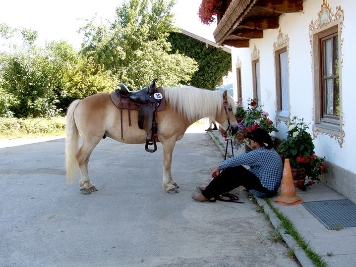 Christian Weber* mit Pferd Rocky