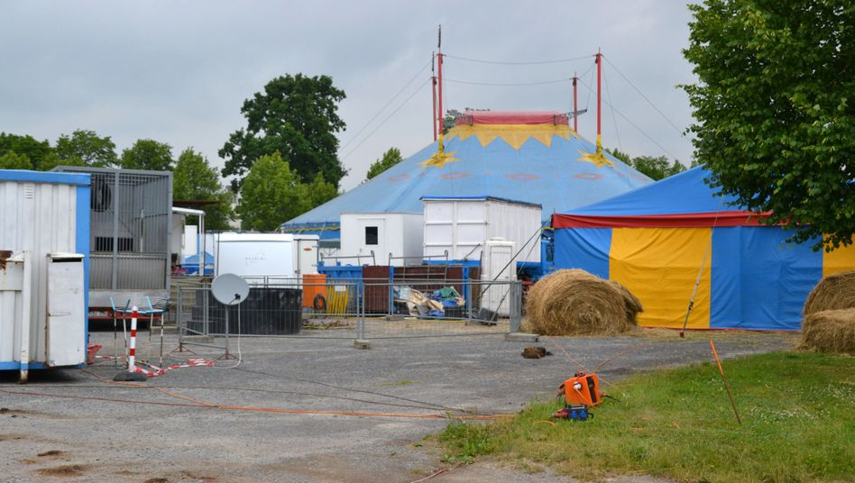 Zirkus Francordia: Ausgebrochener Elefant tötet Rentner