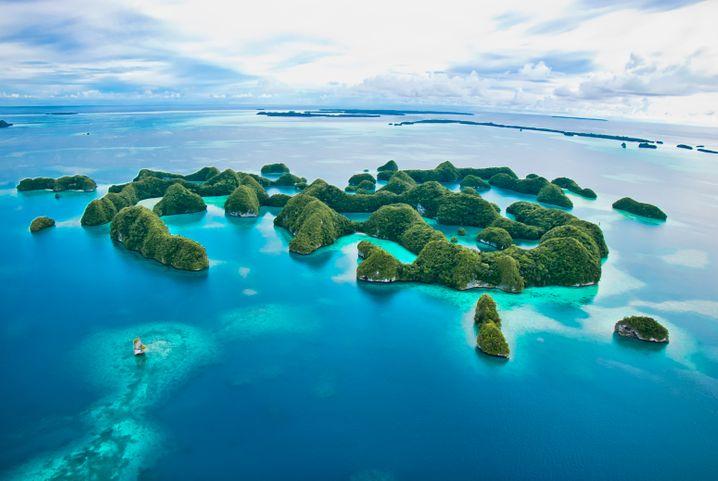 Der Inselstaat Palau besteht aus insgesamt 356 Inseln – elf sind bewohnt