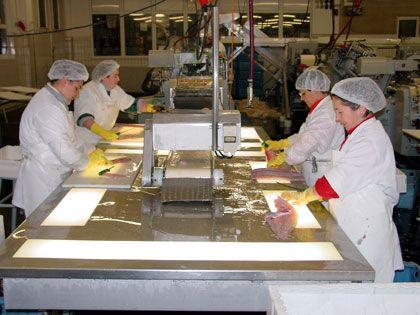 """""""Alles in einer Hand"""": Weiterverarbeitung und Transport der Fische in lückenloser Kühlkette gehören bei der Kutterfisch-Zentrale ebenso zum Geschäft wie die Belieferung von Spezialitätenrestaurants"""