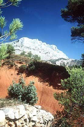 Auf dem Weg zum Gipfel: Zikaden und Falter begleiten den Wanderer