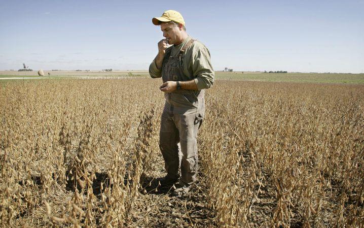 Sojabohnen-Farmer in Iowa: Zugang zum China-Markt gekappt