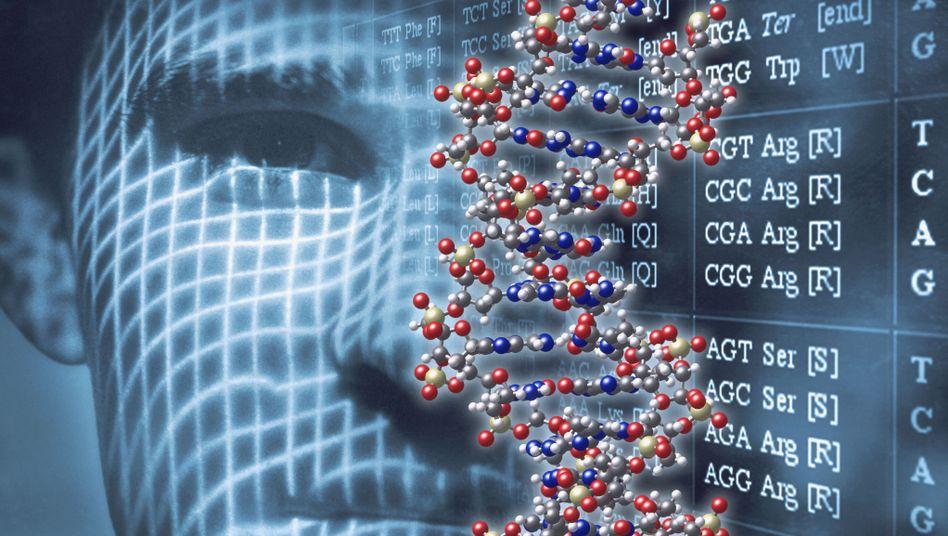 Erbgut und Aussehen: Verschiedene Gene beeinflussen, wie sich das Gesicht entwickelt