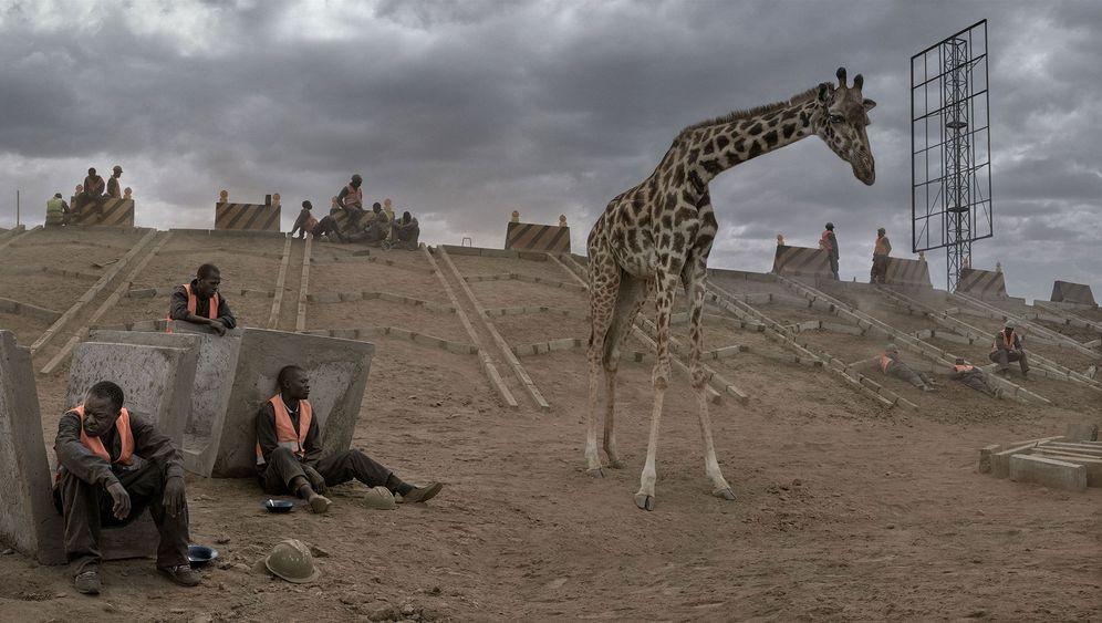 """""""This Empty World"""": Wenn Lebensräume zubetoniert werden"""