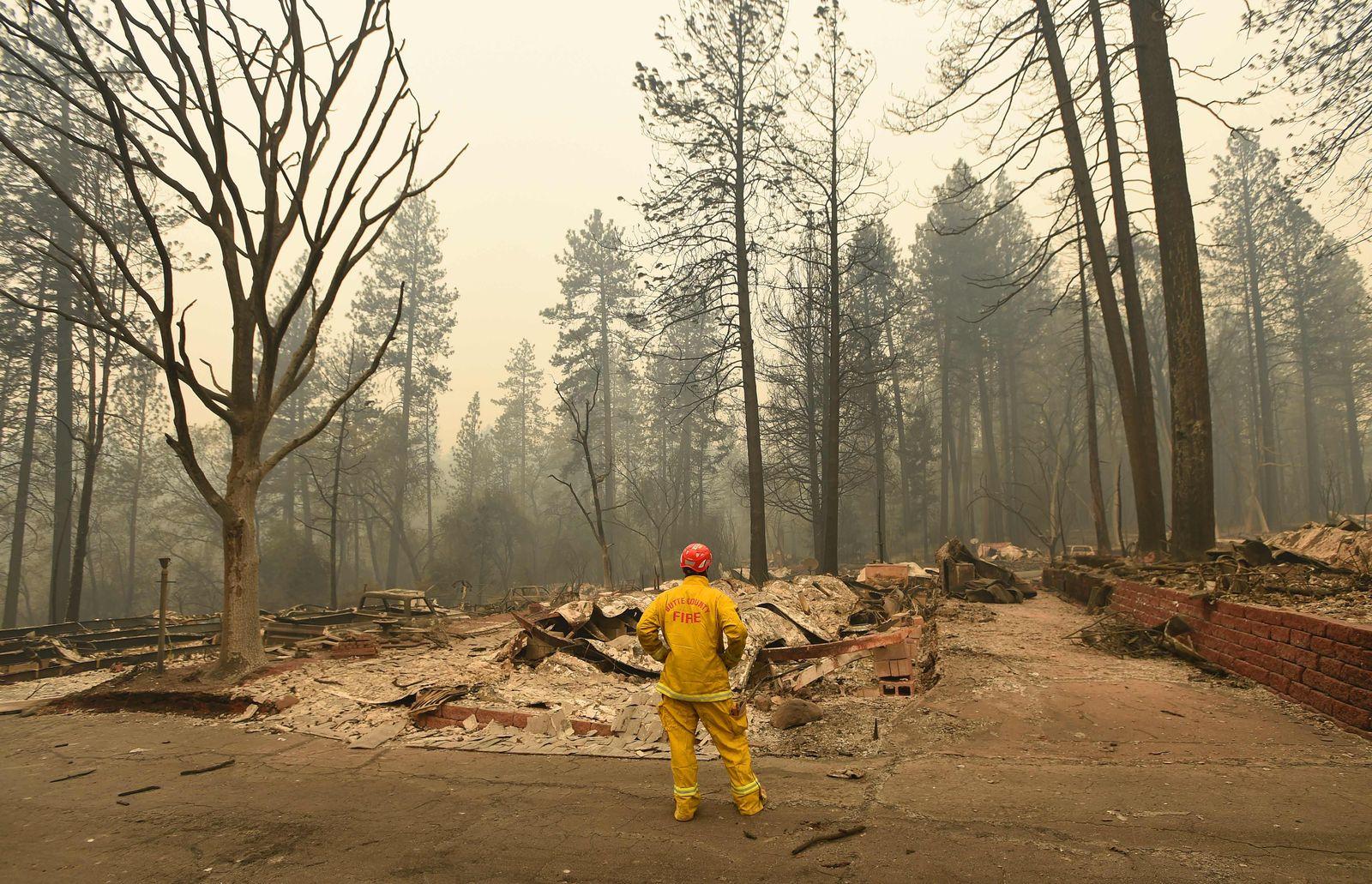 Kalifornien/ Waldbrände/ Josh Edelson