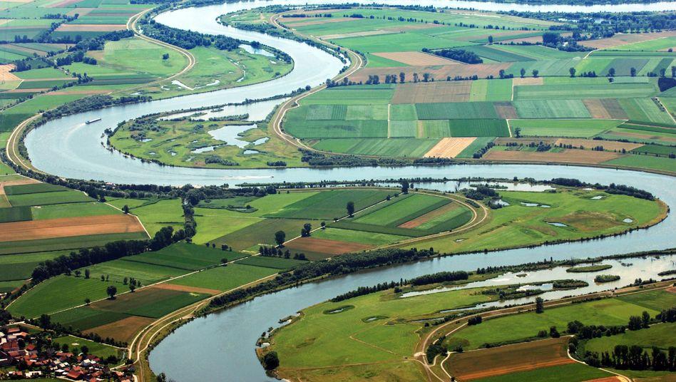Donau im Landkreis Staubing-Bogen: Wassermenge um bis zu 25 Prozent angestiegen