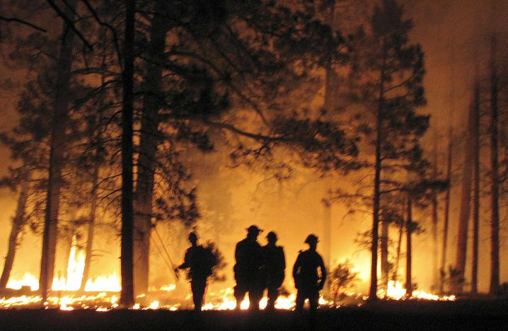 Firefighters battle a blaze on the North Rim near Grand Canyon National Park in Arizona in 2006.