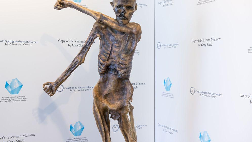 Eismumien-Kopie: Ötzi aus Harz