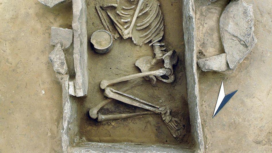 Steinzeitliches Grab in Sachsen-Anhalt: Analyse alter DNA kombiniert mit archäologischer Forschung