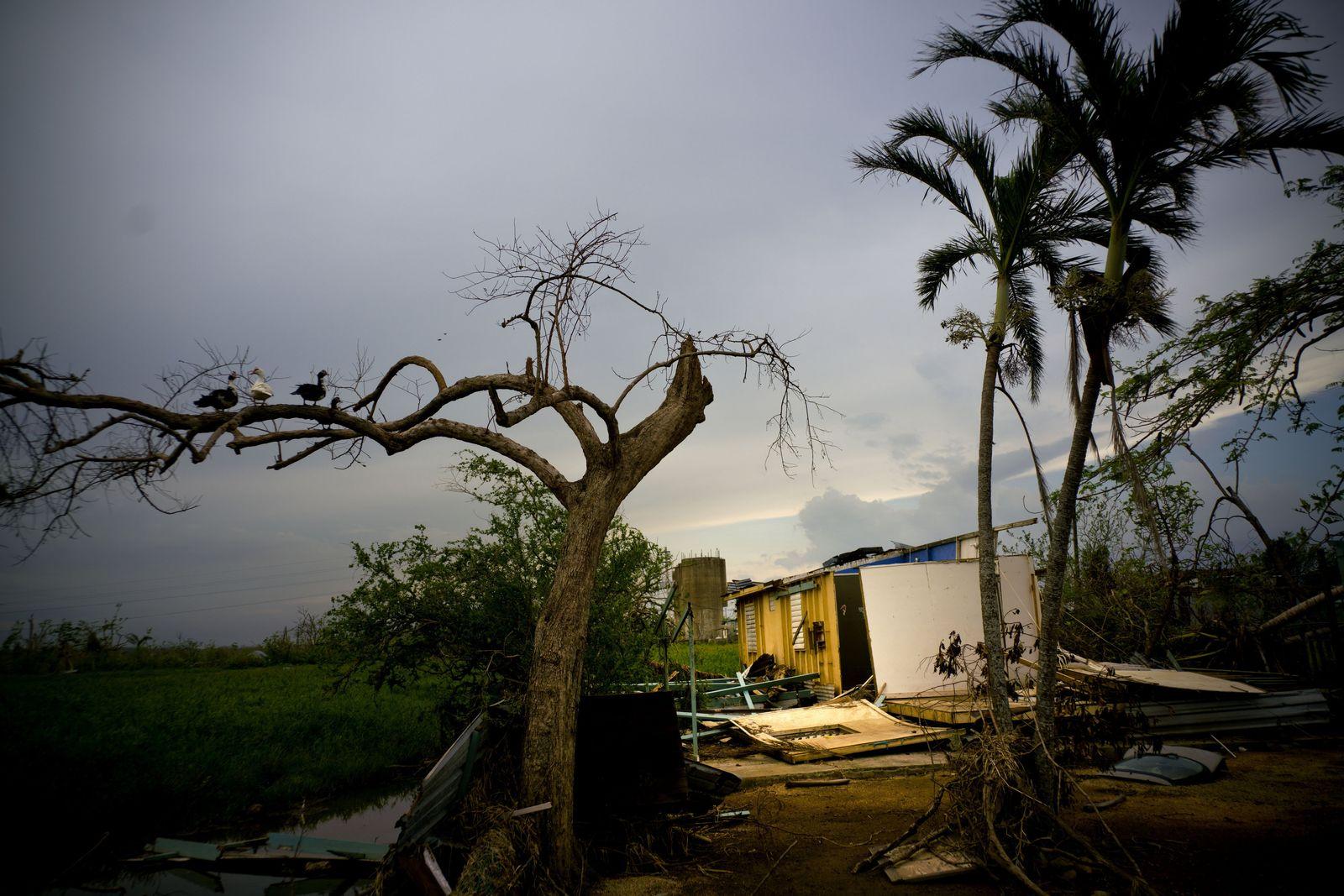 Steuerreform USA / Puerto Rico Hurricane Maria