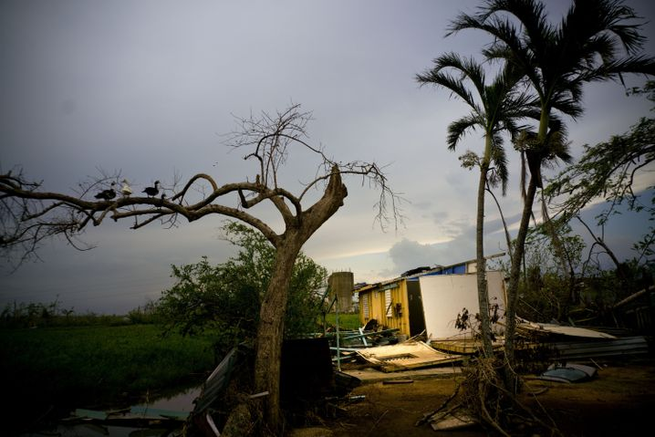 "Puerto Rico nach Hurrikan ""Maria"""