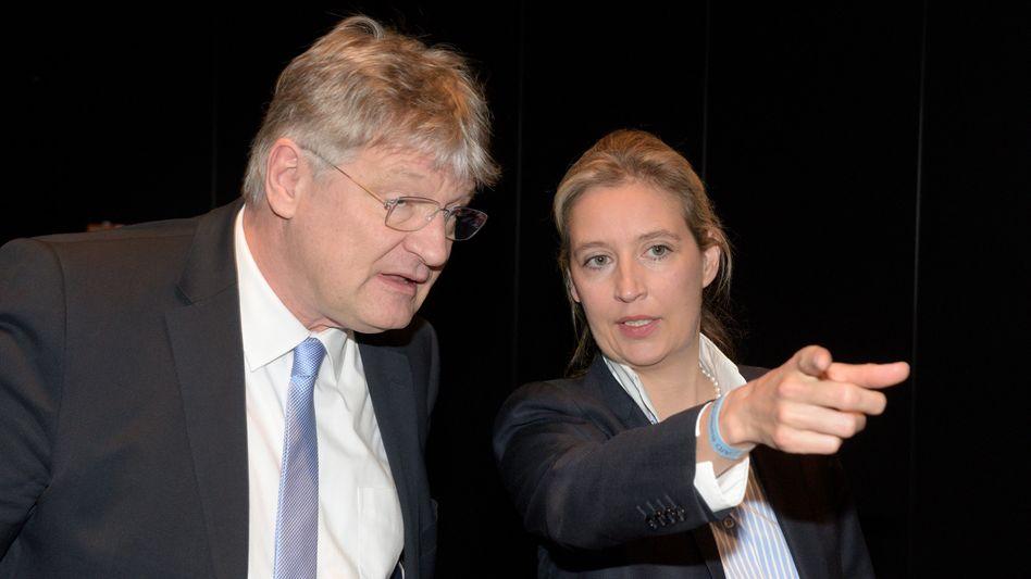 AfD-Chef Meuthen, Fraktionschefin Weidel