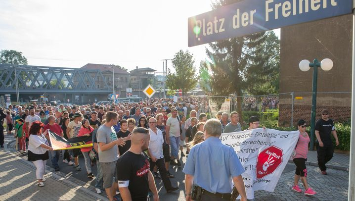 Ausschreitungen in Heidenau: Seit' an Seit' mit der NPD