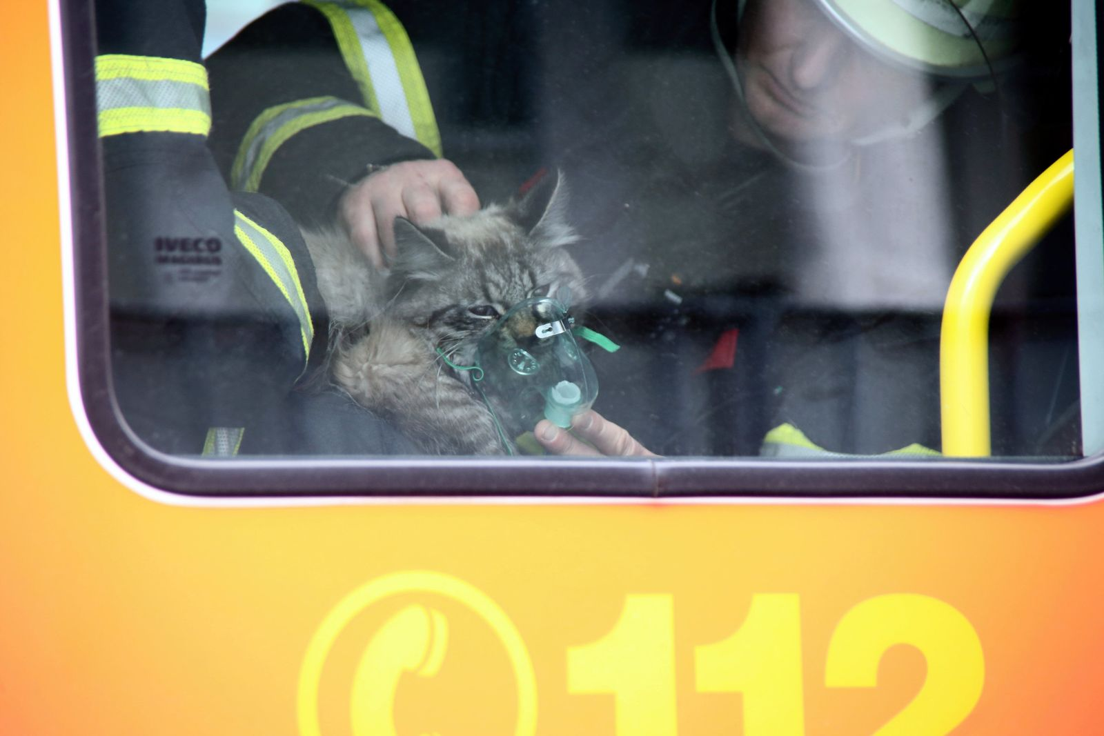 Feuerwehrmänner beamten Katze mit Sauerstoffmaske