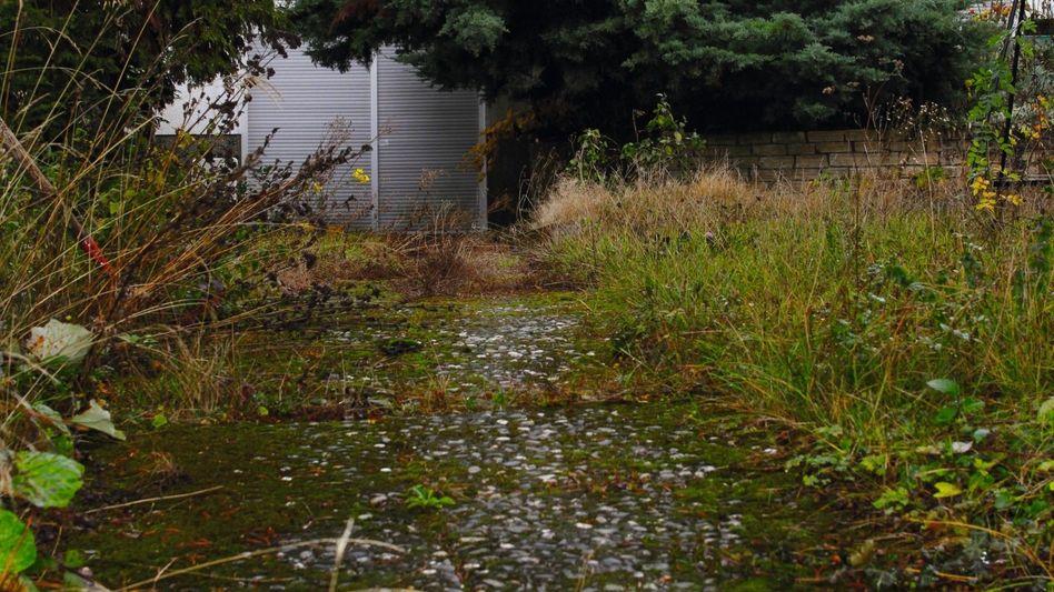 Weg durch den Garten zum Tatort in Saarbrücken »Da kommt Papa«
