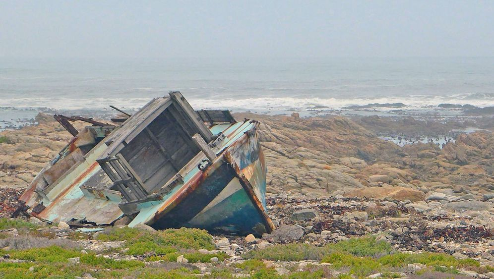 Namaqualand in Südafrika: Ringelblumen und Diamantenglitzer