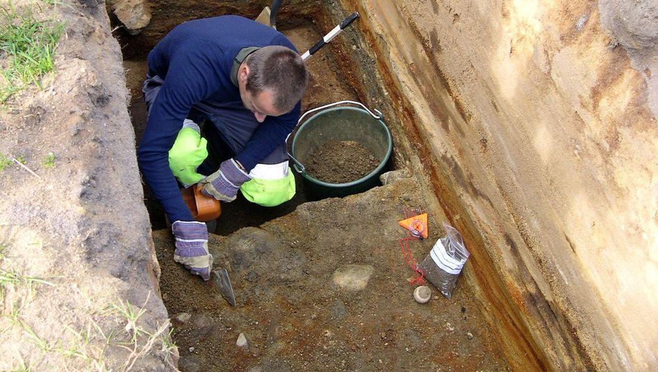 Like a dinosaur skeleton: Excavations of the 'mini-Pompeii' under way in Norway.